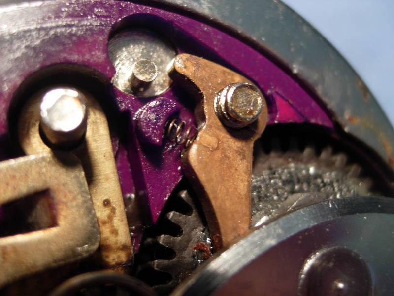 squidder_050.jpg